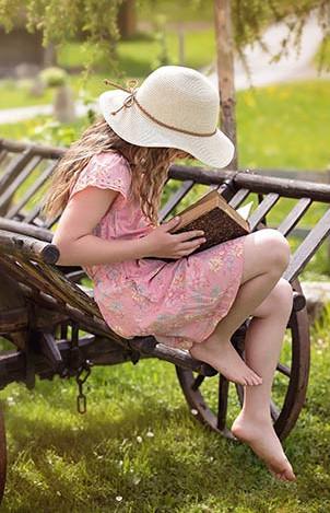Disciplinary Literacy: The Basics