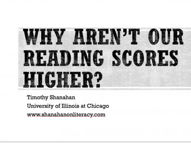 Why Aren't American Reading Scores Higher?