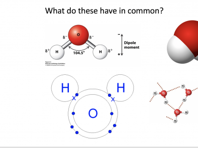 Science Disciplinary Graphics