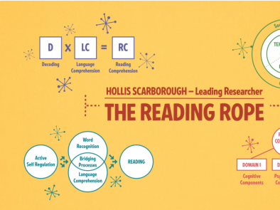 Models Behind the Science of Reading